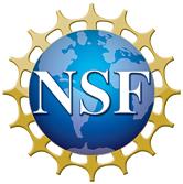 """""""nsf logo"""""""