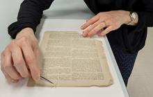Conservation Lab Manuscript