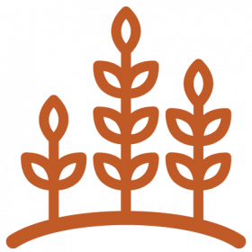 Icon of three growing plant sprouts